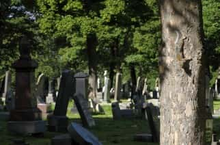 Man dies in Bishopwearmouth Cemetery after being found with injuries
