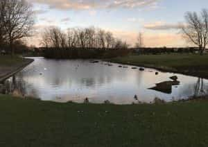 Oliver Henderson Park and its once-picturesque lake are becoming an eyesore because maintenance has been slashed by government spending cuts, say local residents.