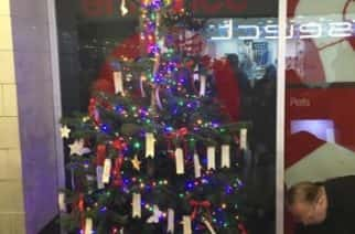 Seaham charity sets up memory tree for Christmas