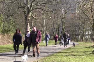 WATCH: Dog walkers take to Leazes Park to raise money for North East cancer charity