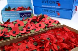 Remembrance Parade and Danny Boyle's 'Pages of the Sea' to mark Armistice Day in Sunderland