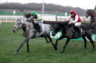 Newcastle Racecourse to host student race night