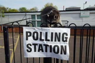 6 of the most unorthodox animals at this year's general election