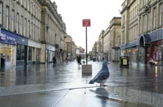 A pigeon walks in an empty Grey Street in Newcastle upon Tyne the morning after Prime Minister Boris Johnson set out further measures as part of a lockdown in England in a bid to halt the spread of coronavirus.