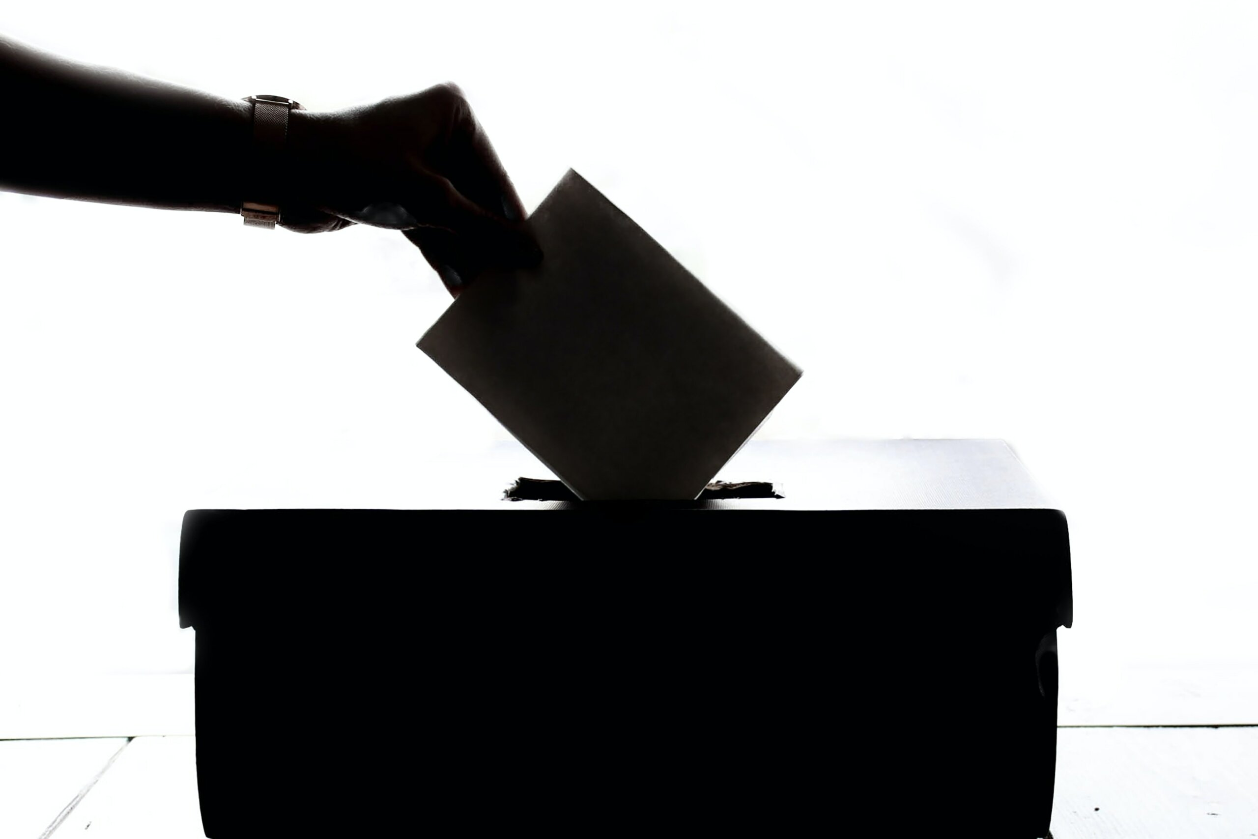 Image: someone submitting their voting ballot